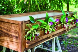 This casket was made from 100 percent locally reclaimed monkeypod wood.